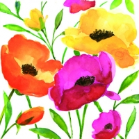 Cocktail Servietten AQUARELL POPPY
