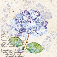 Cocktail Servietten Flou d´Hortensia Purple