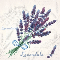 Cocktail Servietten Lavendula