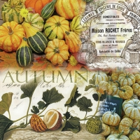 Servietten 25x25 cm - Autumn Pumpkins