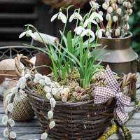 Servietten 25x25 cm - Snowdrops In Basket