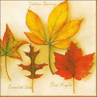 Lunch Servietten Autumn Leaves Creme