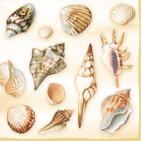 Servietten 33x33 cm - Shells Cream