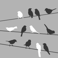 Lunch Servietten Birds On Wire Grey