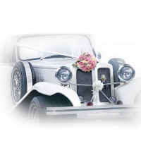Napkins 33x33 cm - Wedding Car