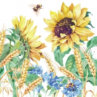 Servietten 33x33 cm - Sunflower And Wheat White