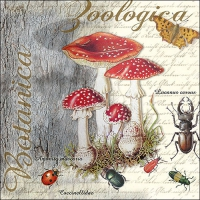 Servietten 33x33 cm - Fly Agaric And Beetle