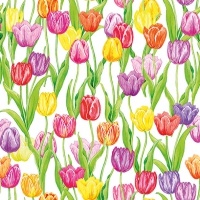 Napkins 33x33 cm - Magic Tulips