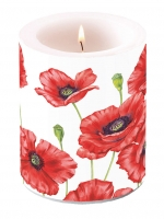 Kerze CANDLE ROMANTIC POPPY