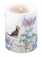 Kerze Candle Big Kitten