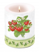 Kerze Candle Big Season Fruit