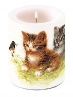 Kerze Candle Big Kitten Friend