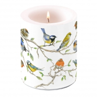 decorative candle - Birds Meeting