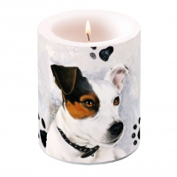 decorative candle - Jack Russel