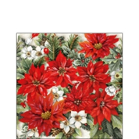 Servietten 25x25 cm - Poinsettia All Over