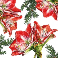 Lunch Servietten Painted Amaryllis