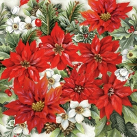 Servietten 33x33 cm - Pointsettia All Over