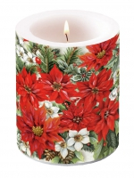 decorative candle - Pouinsettia All Over
