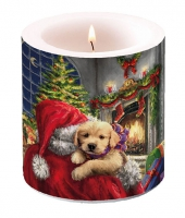 Decorative candle small -  Puppy At Fire