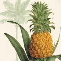 Servietten 33x33 cm - Tropic Pineapple