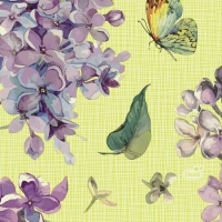 Servietten 24x24 cm - Sweet Butterfly Lime
