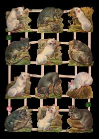 Glanzbilder Ratten /M?use