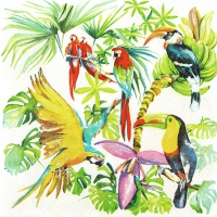 Servietten 33x33 cm - Birds of Paradise