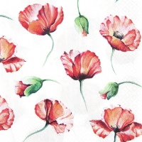 Servietten 33x33 cm - Poppy Drawing