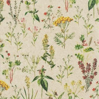 Servietten 33x33 cm - Herbal Meadow