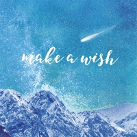 Servietten 33x33 cm - Make a Wish