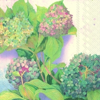 Cocktail Servietten HYDRANGEA BUSH