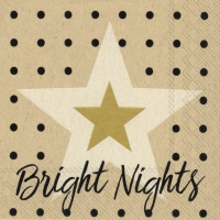 Servietten 25x25 cm - bright nights