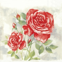 Servietten 25x25 cm - ROSE BOUTIQUE rot