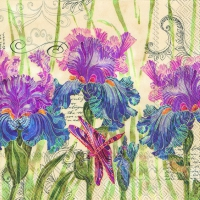 Servietten 25x25 cm - DECORATIVE IRIS