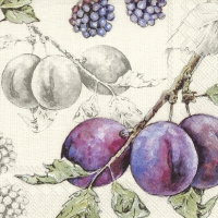 Servietten 25x25 cm - DELICIOUS PLUMS linen