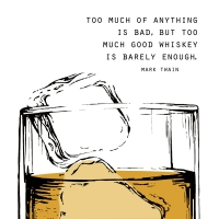 Napkins 25x25 cm - GOOD WHISKEY