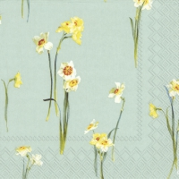 Servietten 25x25 cm - ELEGANT NARCISSUS light blue