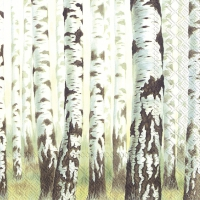 Servietten 25x25 cm - MAGIC TREES