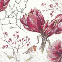 Napkins 25x25 cm - WINTER AMARYLLIS white
