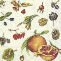 Servietten 25x25 cm - AUTUMN FRUITS