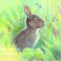 Lunch Servietten RABBIT IN THE MEADOW