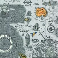 Lunch Servietten CARTE DES OCEANS grey