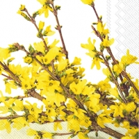 Lunch Servietten FORSYTHIA