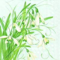 Lunch Servietten EARLY SNOWDROPS light blue