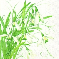 Servietten 33x33 cm - EARLY SNOWDROPS white