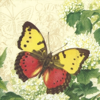 Servietten 33x33 cm - BUTTERFLY SUMMER cream