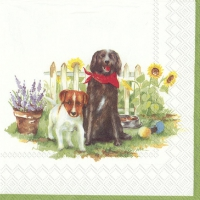 Servietten 33x33 cm - HELLO DOGS white