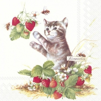 Servietten 33x33 cm - KITTY AND STRAWBERRIES