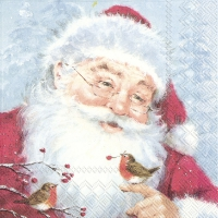 Servietten 33x33 cm - FRIENDLY SANTA
