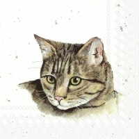 Servietten 33x33 cm - FARMFRIENDS CAT